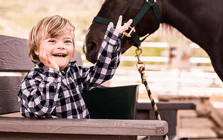 boy with therapy horse